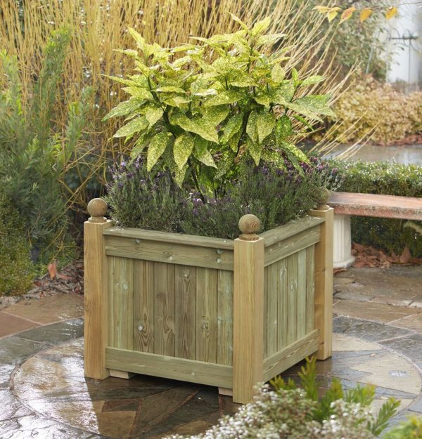Large Versailles planter populated with shrubs.