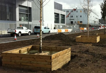 Large wooden planters for trees planted at the Olympic Park in London