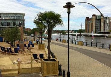 Large tree planter for Quayside Seaside