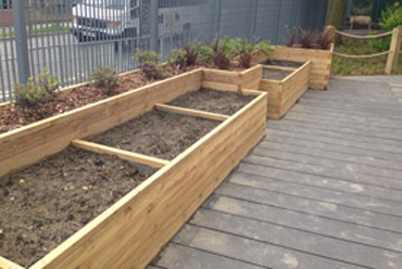Large wooden vegetable planters for a school garden