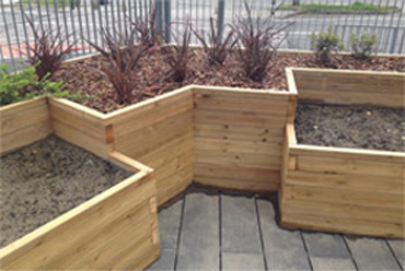 Custom made school vegetable planters