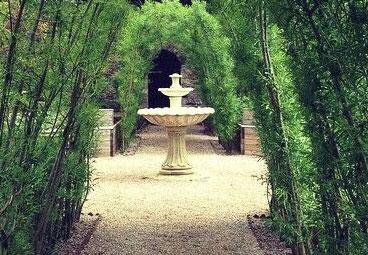 Torre Abbey Medieval Garden