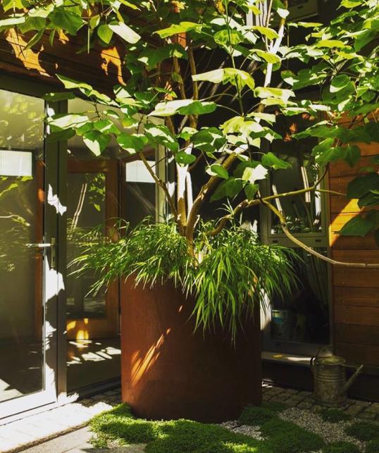 Corten Steel tree planter