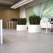 Round Fibreglass planter in an office space