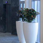 White Fibreglass planter placed inside a business foyer