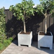 Outdoor Tree Planters built with Galvanised Steel