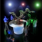 Large Composite Planters with LED lights