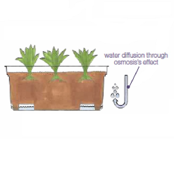 Self-watering system in composite planters