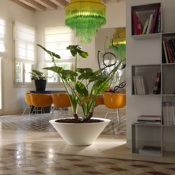 Ciotola bowl planter in white