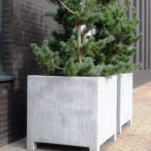 Large tree planters in quality steel